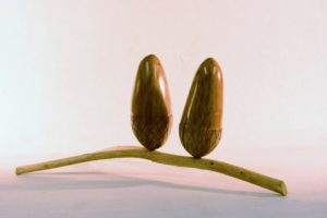 002 acorn